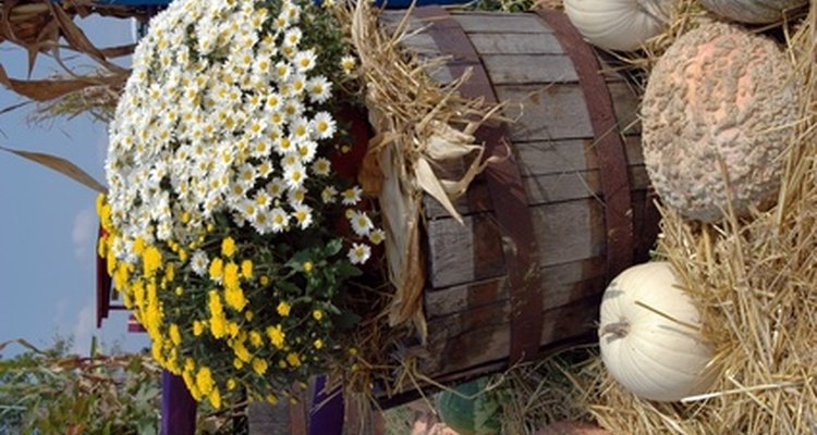 Flowers are commonly planted in half whiskey barrels.