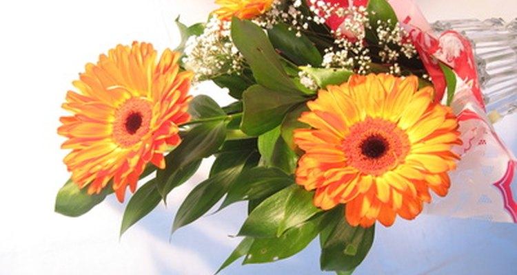 Crea hermosos arreglos florales usando tu jardín y véndelos para ocasiones especiales.