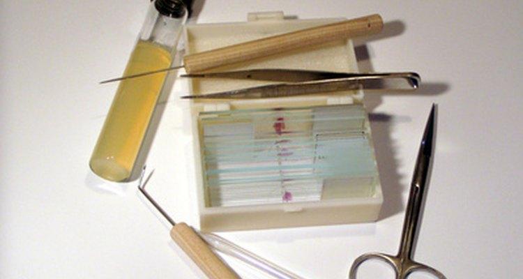El tipo de instrumentos disponibles para los técnicos de laboratorio depende del tipo de laboratorio.