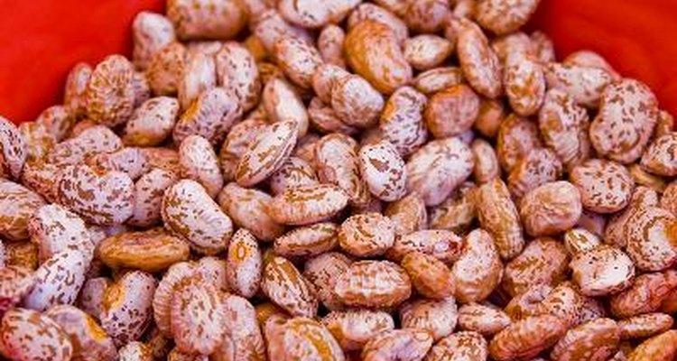 Remojar las semillas con cubierta dura antes de plantarlas aumenta la velocidad con la que absorben el agua.
