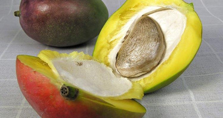 Cómo combatir la alergia al mango.
