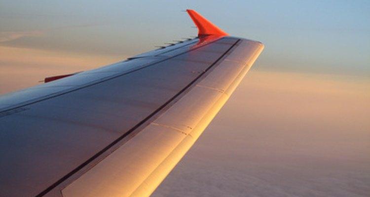O tamanho da asa determina a força de sustentação