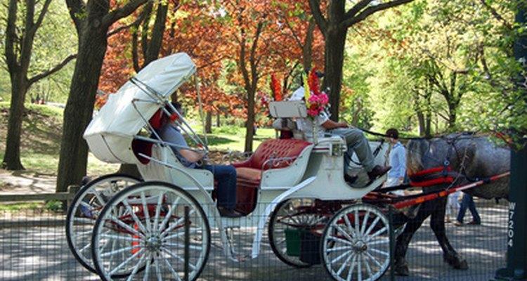 As carruagens puxadas por cavalos eram populares no período regencial