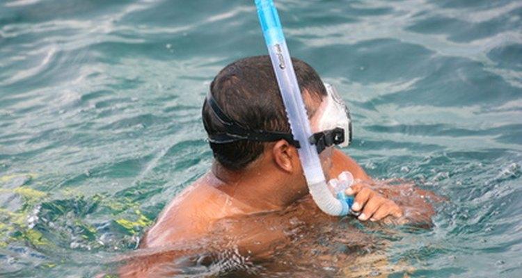 Mergulho com um tubo de respiração pode produzir horas de diversão