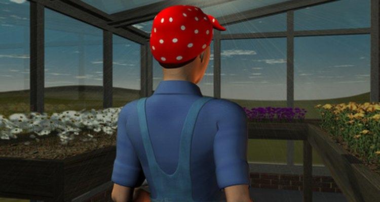 Si tienes buena mano con las plantas, serás un perfecto operario de invernadero.
