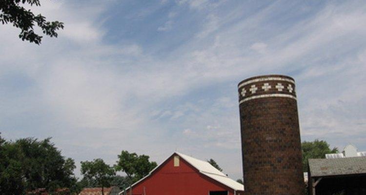 As fazendas produzem diversos tipos de bens de disponíveis para a venda