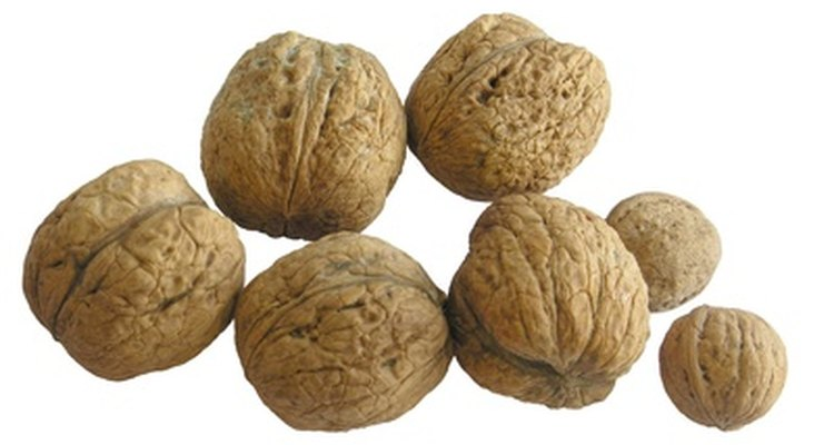 Walnuts contain vitamin E and are a good source of healthy fats.