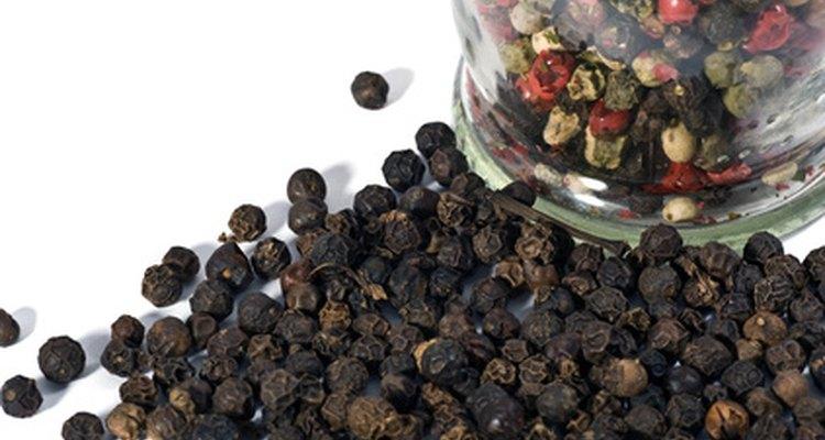 Variedad de pimientas secas para uso culinario.