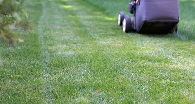 Lâminas de cortadores de grama precisam ser amoladas de tempos em tempos, para manter um corte uniforme no gramado
