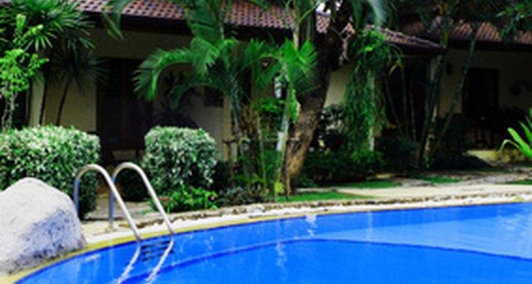 Mantén limpia tu alberca para que los nadadores no se vean expuestos a patógenos peligrosos.