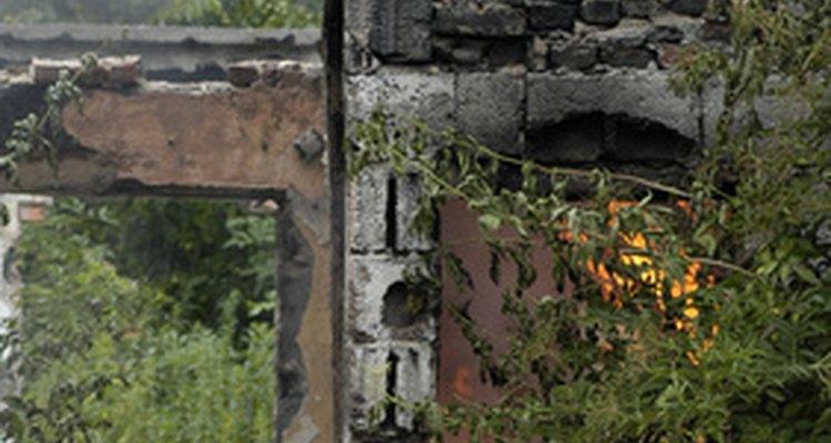 Un efecto primario de los terremotos pueden ser los incendios.