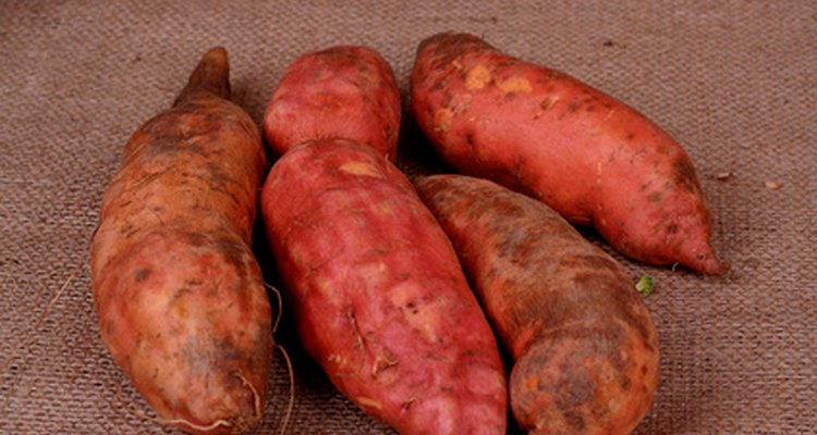 Yam root produces a natural progesterone alternative.