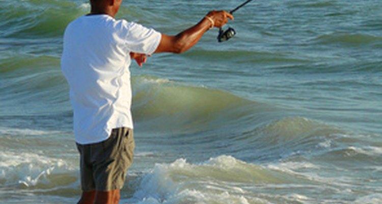 Pesca directamente desde la costa, en Alabama.