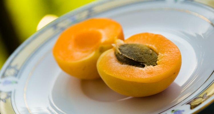 An apricot stone