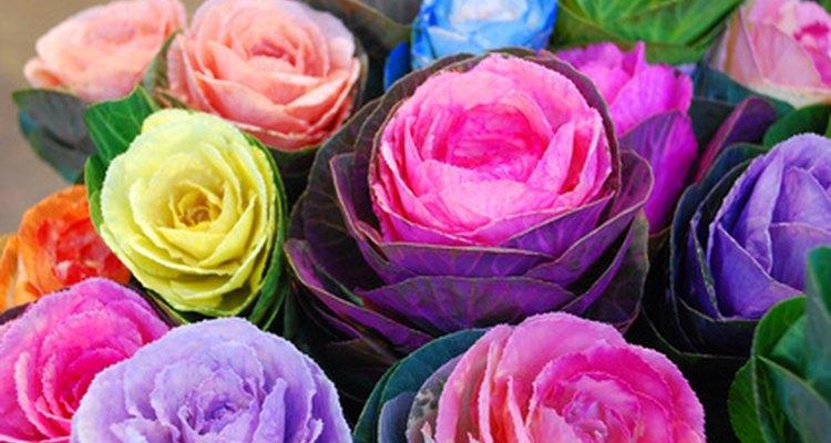 Las flores de artesanía mexicana hechas de papel son una excelente opción decorativa.