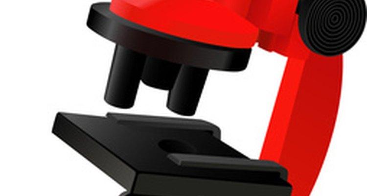 The Tasco Microscope provides a 900x magnification.
