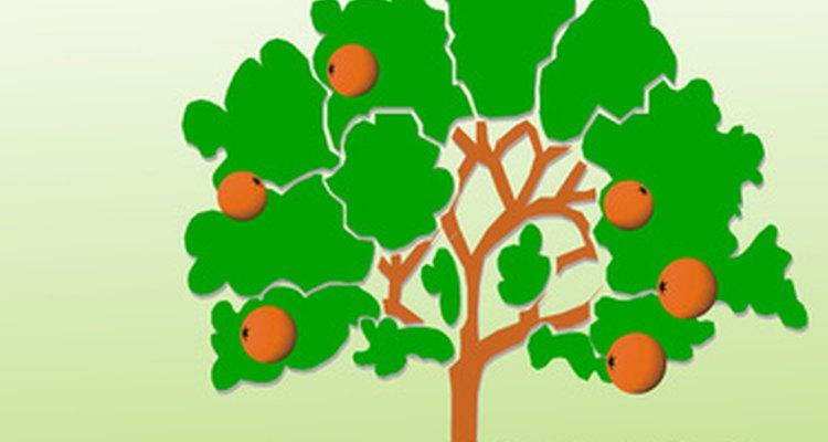 Enseña a los niños todo sobre el Día del Árbol con divertidos juegos y actividades.