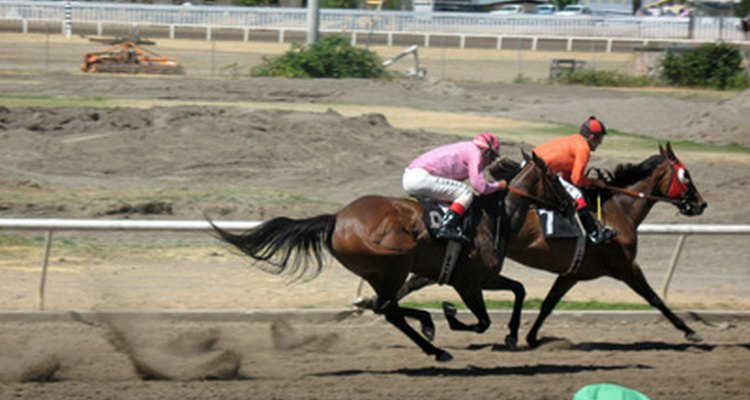 Horse walkers are commonly used on race tracks to cool down horses following a workout or race.