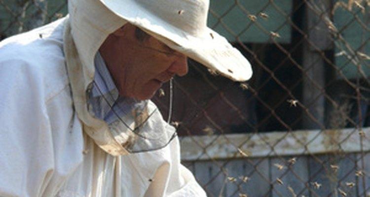Um macacão de apicultor é o equipamento mais seguro para se usar quando erradicamos abelhas