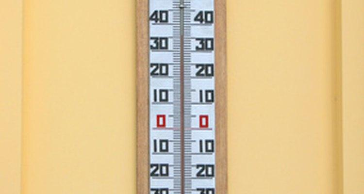 Coloca un termómetro cerca de la planta para ver la temperatura del aire.
