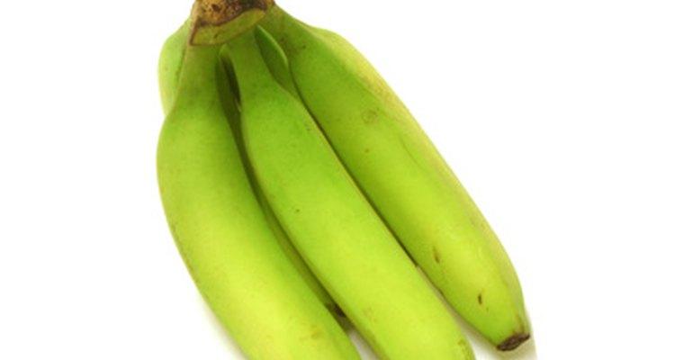 Bananas são um alimento comum porto-riquenho chamado de mofongo