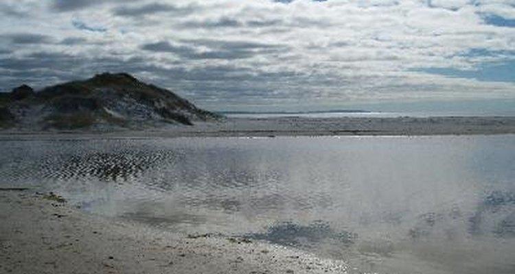 Playa de Nueva Zelanda.