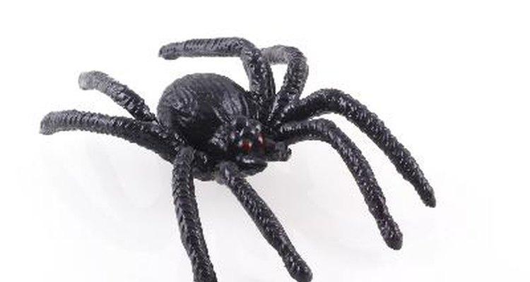 Una araña ecológica de halloween para adornar tu jardín.