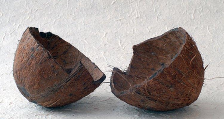 A composição de uma casca de coco, parecida com a madeira, cria a base ideal para a produção de carvão