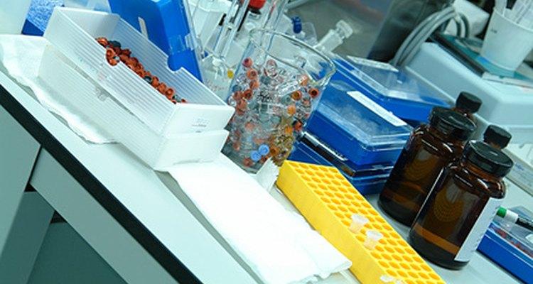 Los químicos forenses trabajan en los laboratorios.