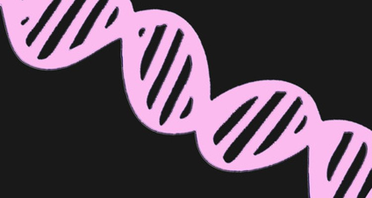 DNA fingerprinting has many pros and cons.