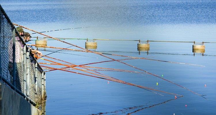 As varas de bambu são uma boa ideia para pescadores iniciantes