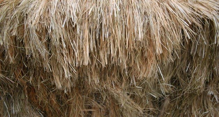 Evita que sua peruca fique frisada usando tinta feita para cabelo sintético