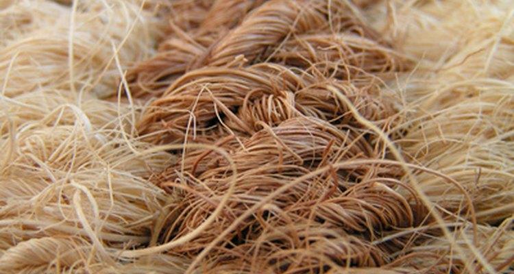 La fibra de un cabello o de una prenda dejada es llamada prueba de rastreo.