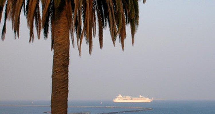 Muitas empresas oferecem viagens para viajantes solteiros acima dos 50