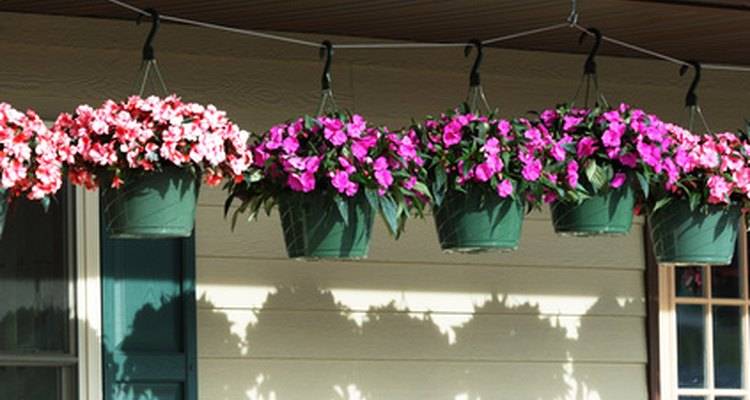 Hanging baskets can be a bother to water.