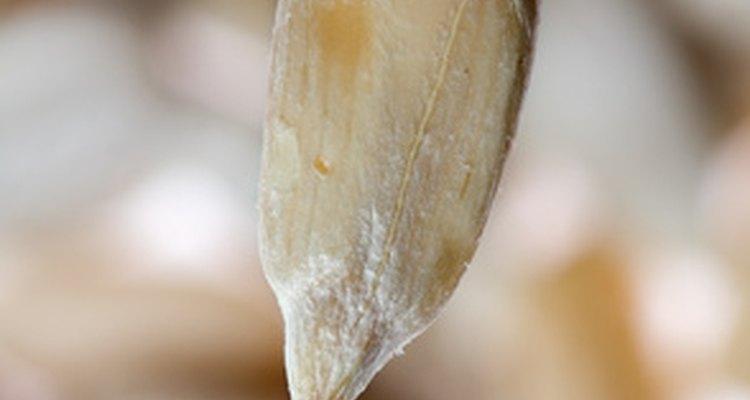 Las galletas de semillas de lino son una opción muy saludable para quien desea comer sano.