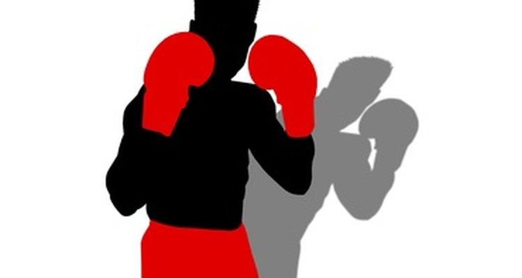Boxer briefs combine briefs and boxer underwear.
