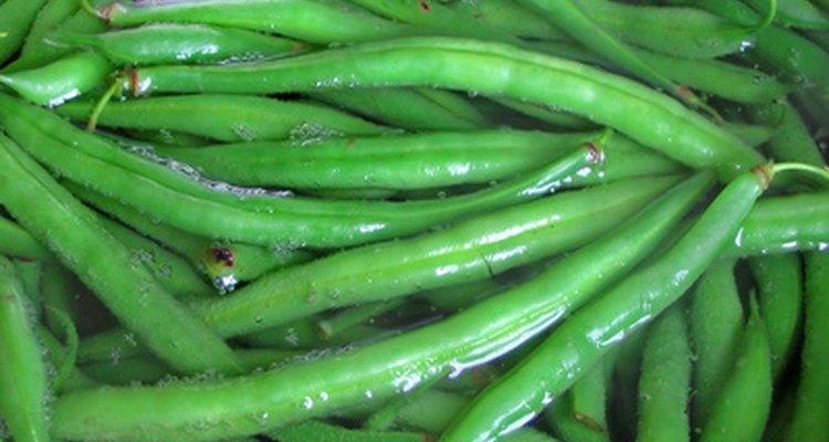 Hervir las verduras ayuda a mantener el contenido de humedad ideal para hacer puré.