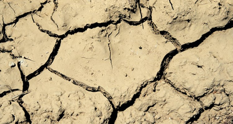 O pH do solo pode ser testado, e ele varia fortemente entre ácido e alcalino, de acordo com os elementos constitutivos e o meio ambiente