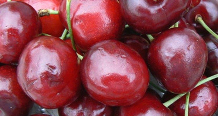 Uma maneira de conservar as cerejas frescas