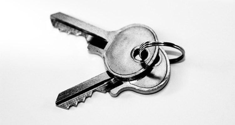 Um relatório de transferência deve incluir itens necessários para a realização de funções diárias.