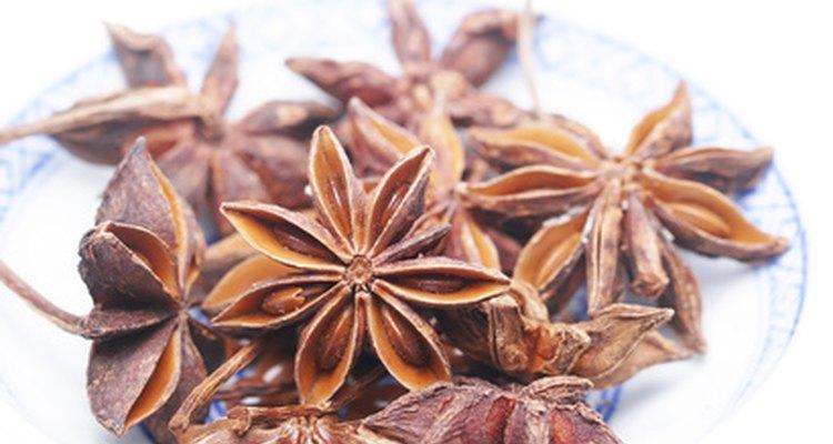 Anis é uma erva utilizada para prevenir e tratar cólica leve