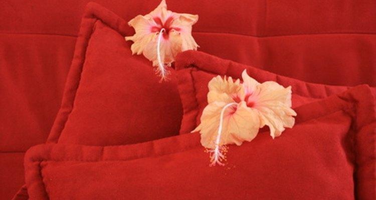 As almofadas emboloradas ou mofadas são prejudiciais à saúde