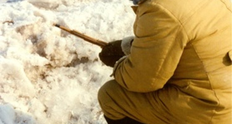 Pesca en el hielo con un palo.