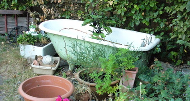 Old bathtubs can make terrific container ponds.