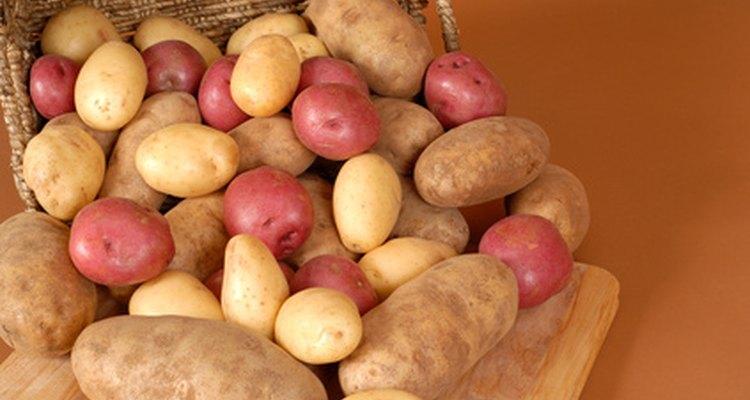 Há muitas variedades de batatas
