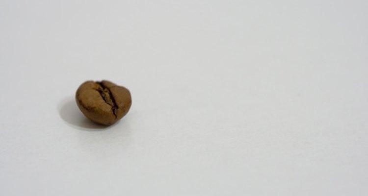 Recoge tus propios granos de café.
