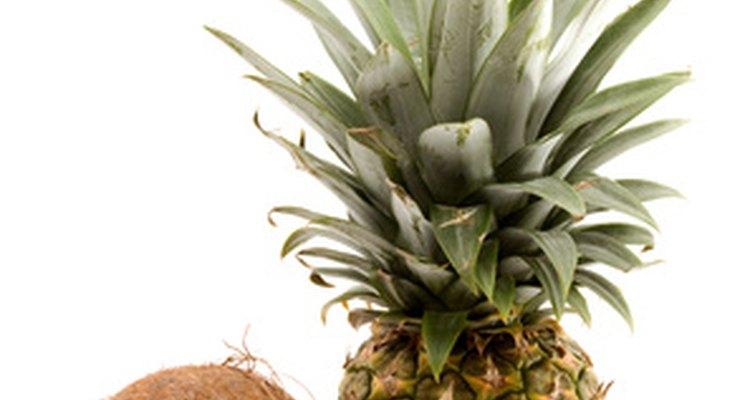 Las piña coladas brindan una mezcla cremosa de crema de coco y jugo de piña.
