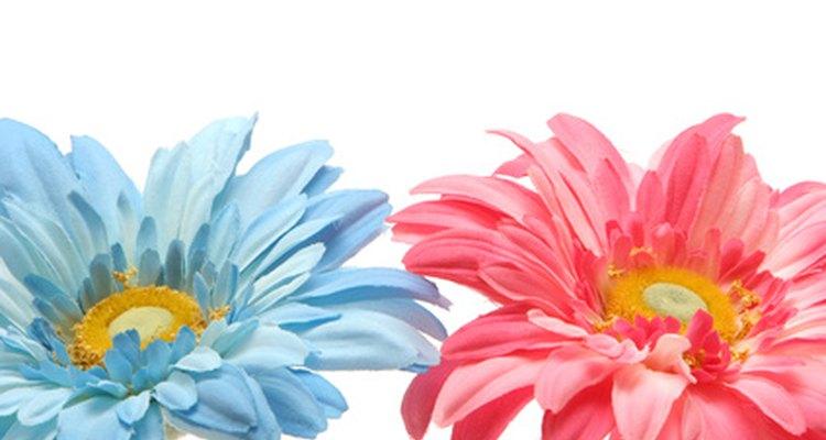 Deja flores rosas y celestes.