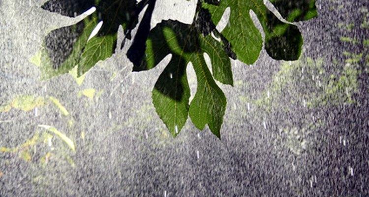 La irrigacion es un metodo artificial para regar las plantas.